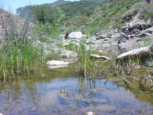 Wild Places Of Southern California